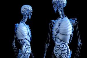 Chirurgie en impression 3D